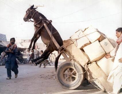 Рэй Далио: Как действует экономическая машина