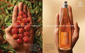 Бразильская компания Natura возглавила местный рынок косметики, парфюмерии и средств личной гигиены за счет использования ингредиентов местного происхождения и интеграции своей деятельности по продажам в жизнь местных сообществ.
